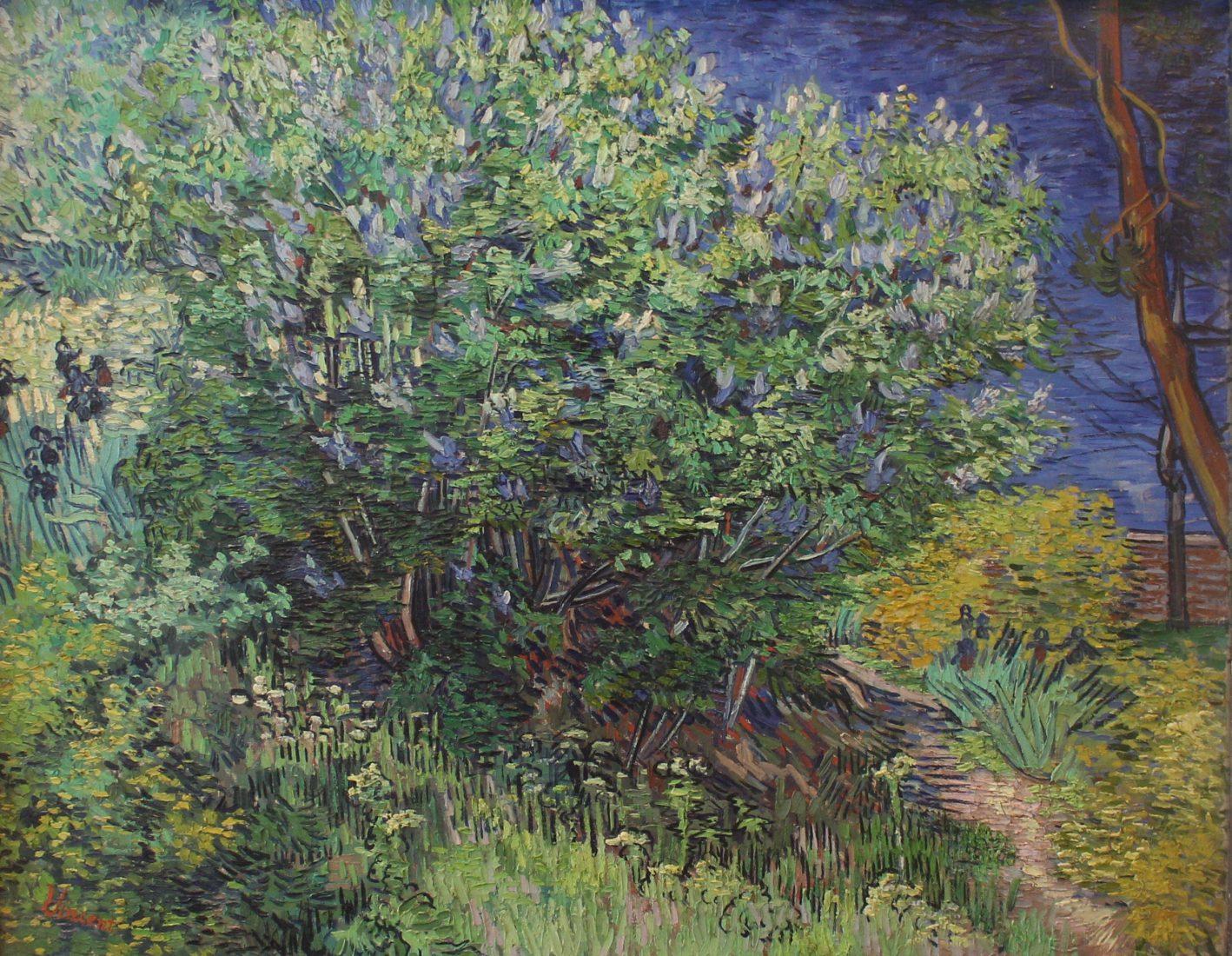 Saint Petersbourg musée Ermitage van Gogh