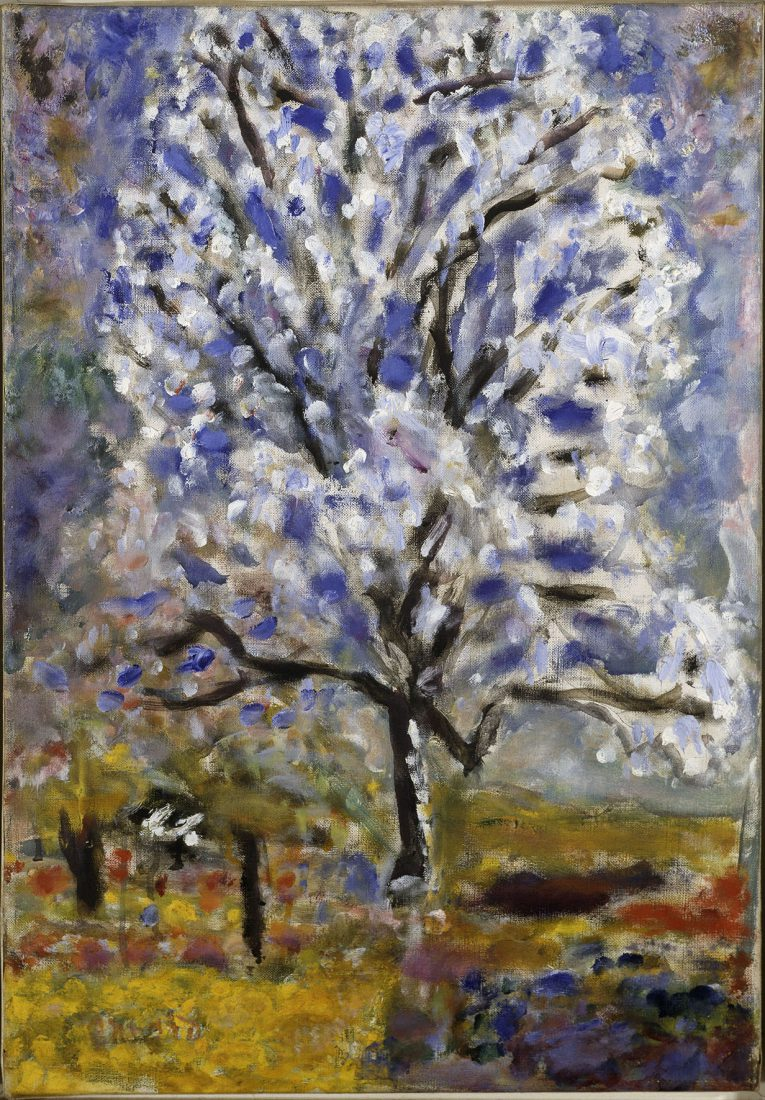 Bonnard Pierre (1867-1947). Amandier en fleurs Paris, Centre Pompidou