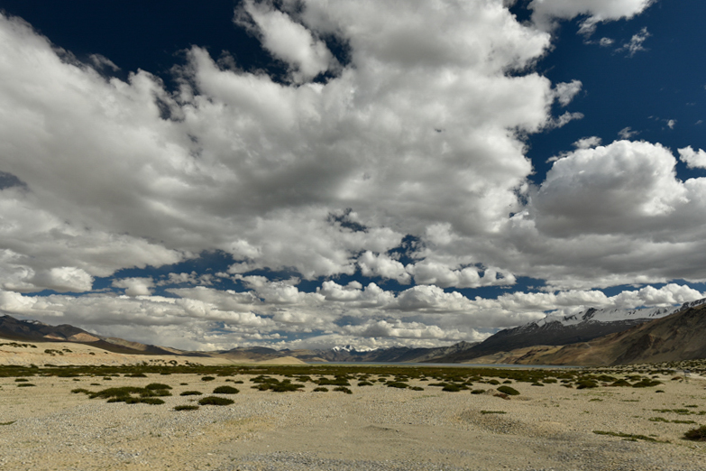 exposition Photo-cliubn Aigle Montagne Ladakh ZP