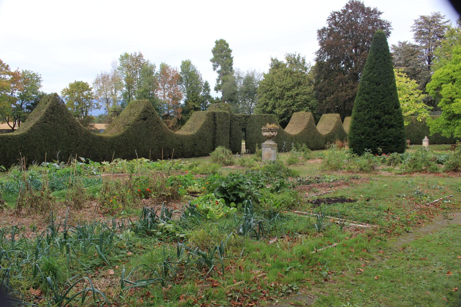 ferney Voltaire Le jardin potager