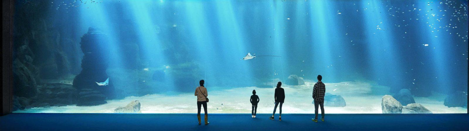 Nausicaa Boulogne-sur-Mer grande baie et personnes