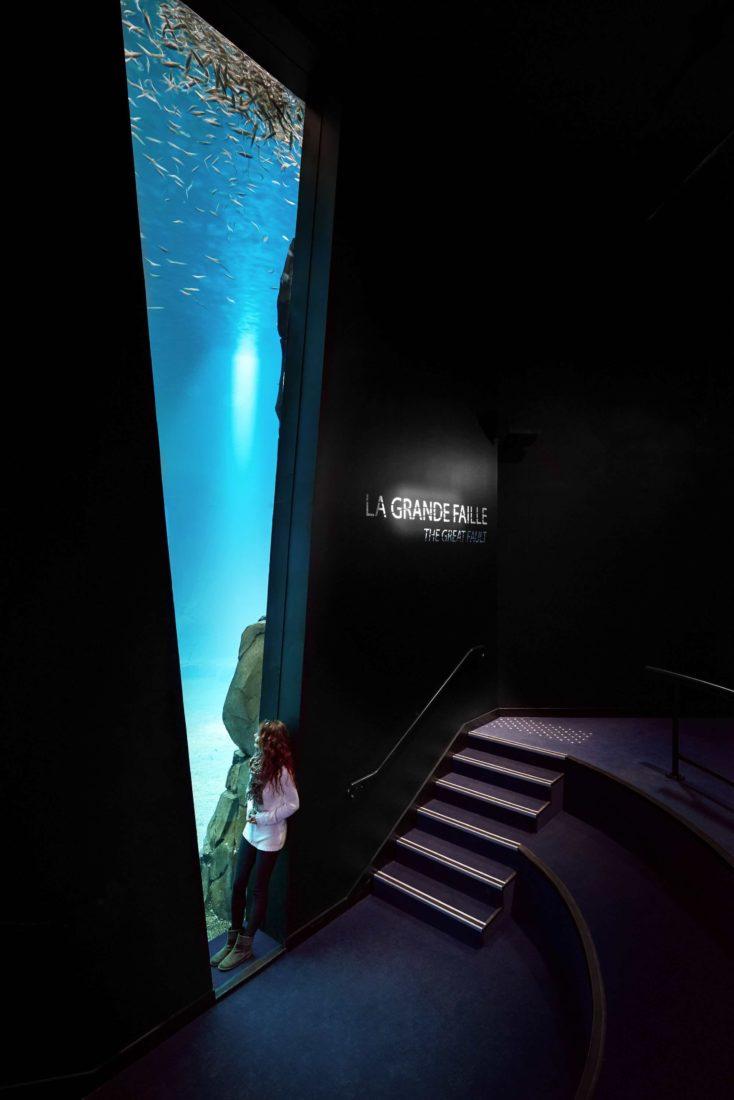 Nausicaa Boulogne-sur-Mer la grande faille