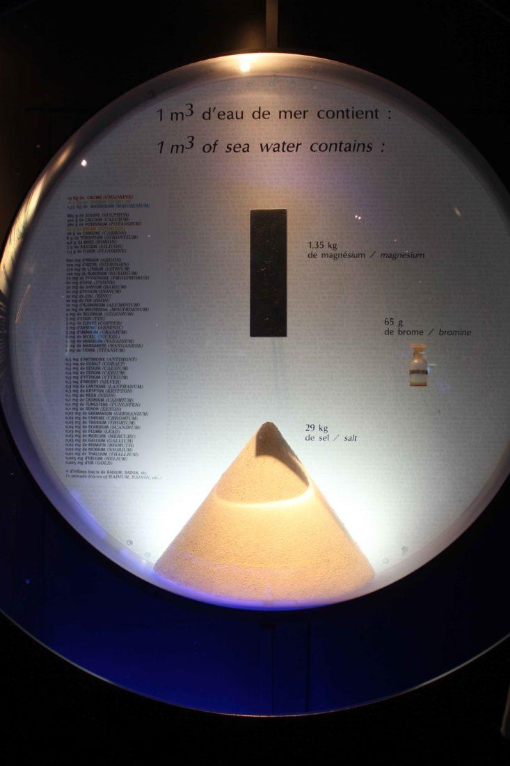 Nausicaa Boulogne-sur-Mer contenu de l'eau de mer