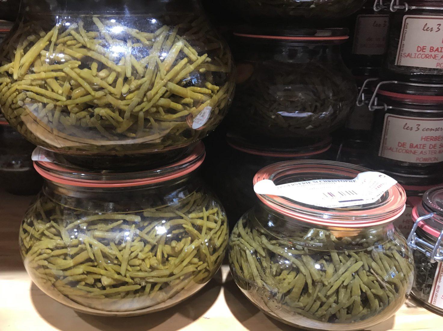 Wimereux salicorne