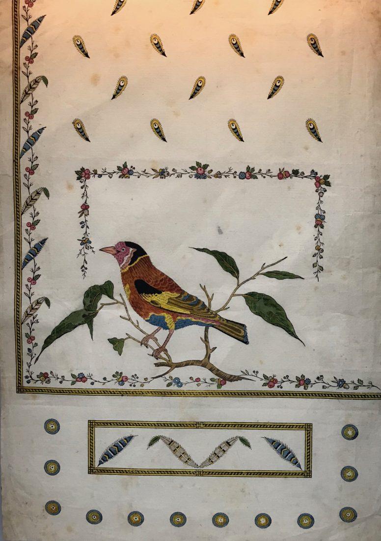 expo indiennes Neuchâtel oiseaux