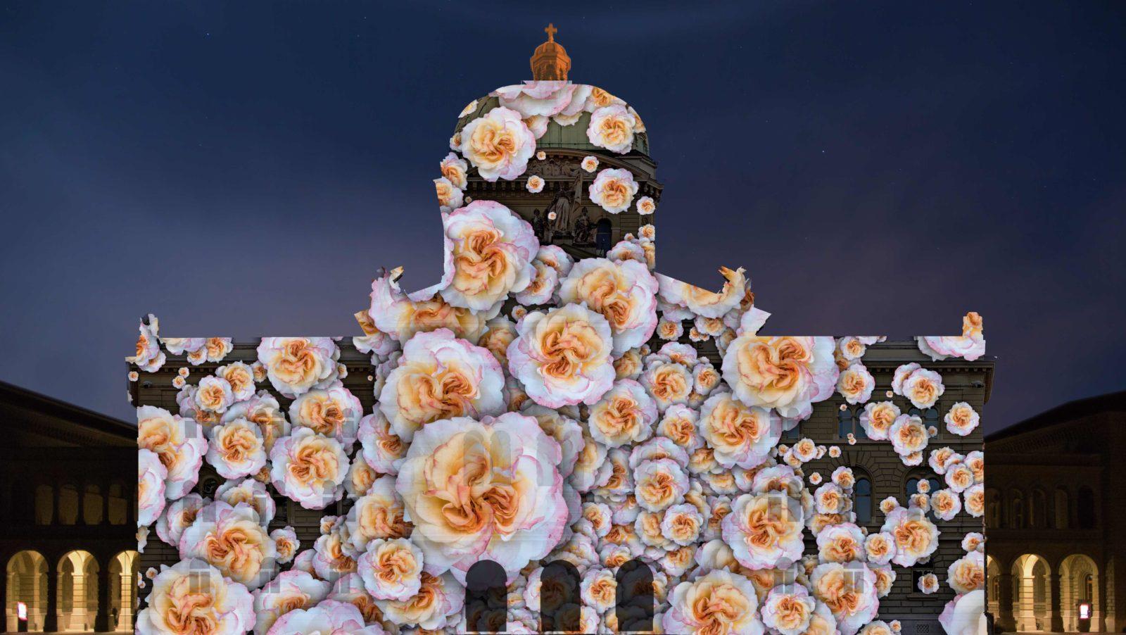 Rendez-vous Bundesplatz 2018 LE PETIT PRINCE le jardin de roses