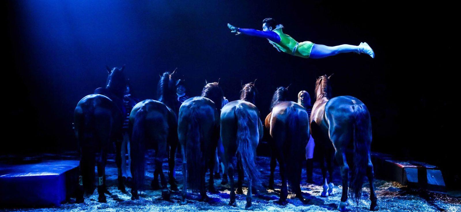 Cirque Alexis Gruss Nouvelle création : Origines