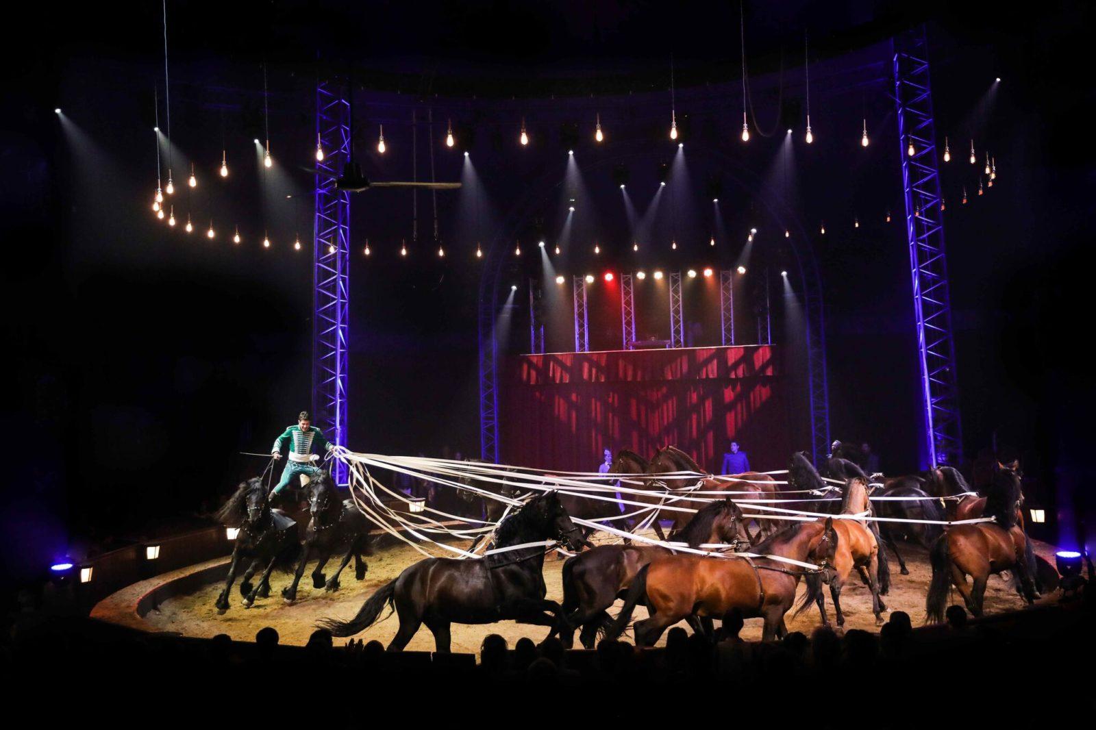Cirque Alexis Gruss chevaux menés