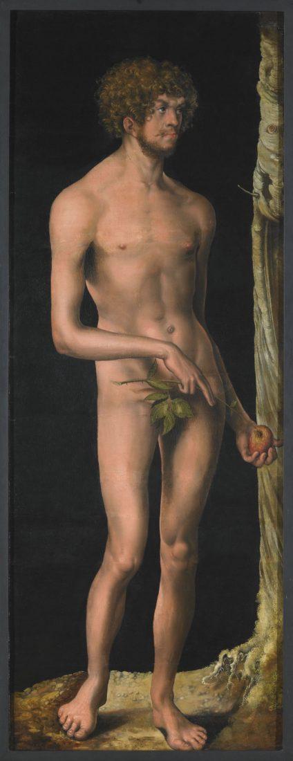 mbaa Besançon Lucas CRANACH, Adam