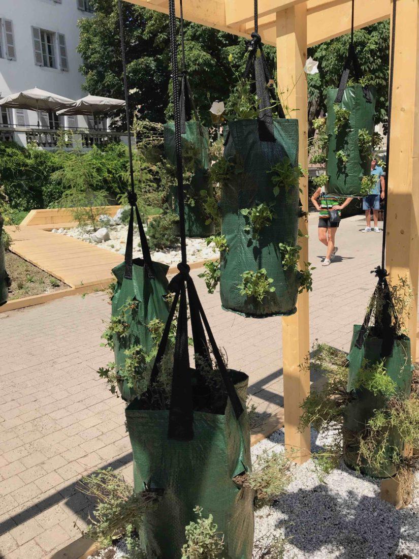 Annecy 2019 Natures en mouvement bacs de plantes