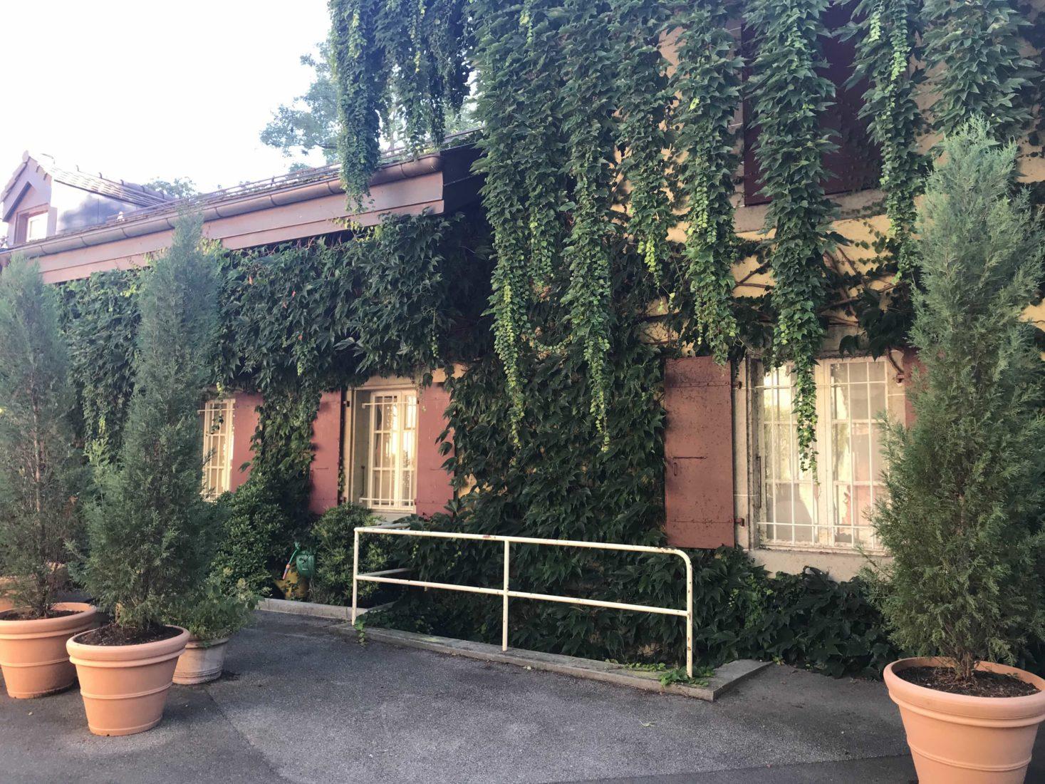 maison rose Simenon rue des Figuiers Lausanne