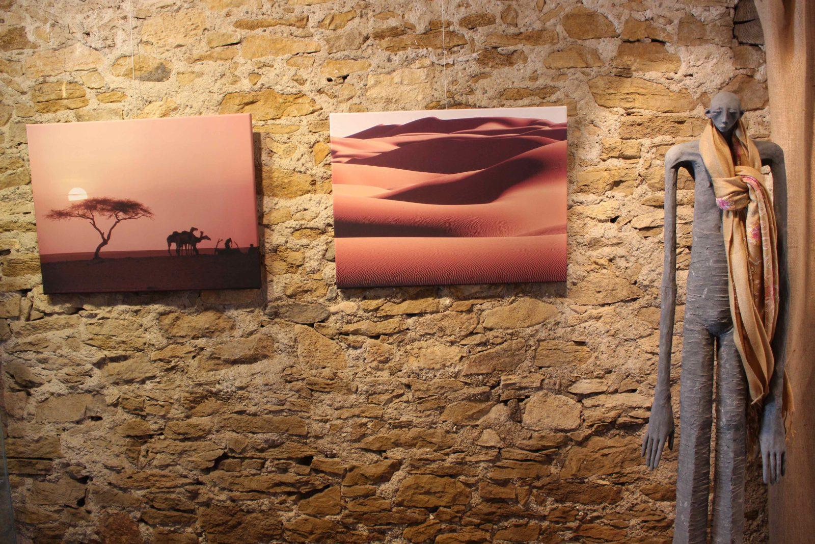 Maximilien Bruggmann Arbre du Ténéré et Mer de dunes