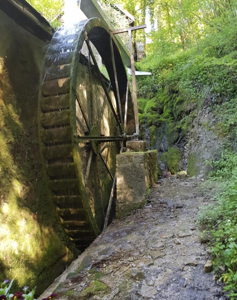 la roue du moulin de Chanaz
