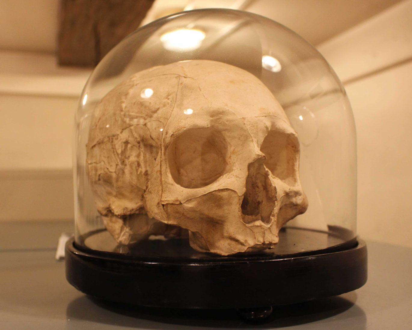Archives départementales Côte-d'Or Crâne de Jean sans Peur