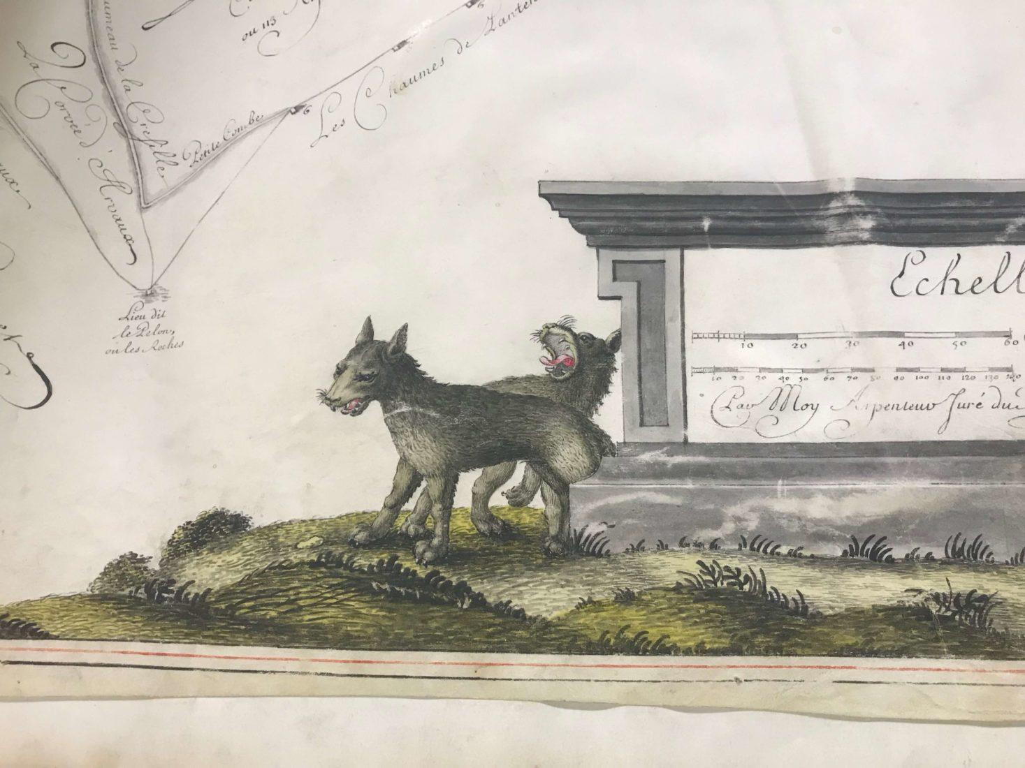 Archives départementales Côte-d'Or Atlas de Citeaux Loups