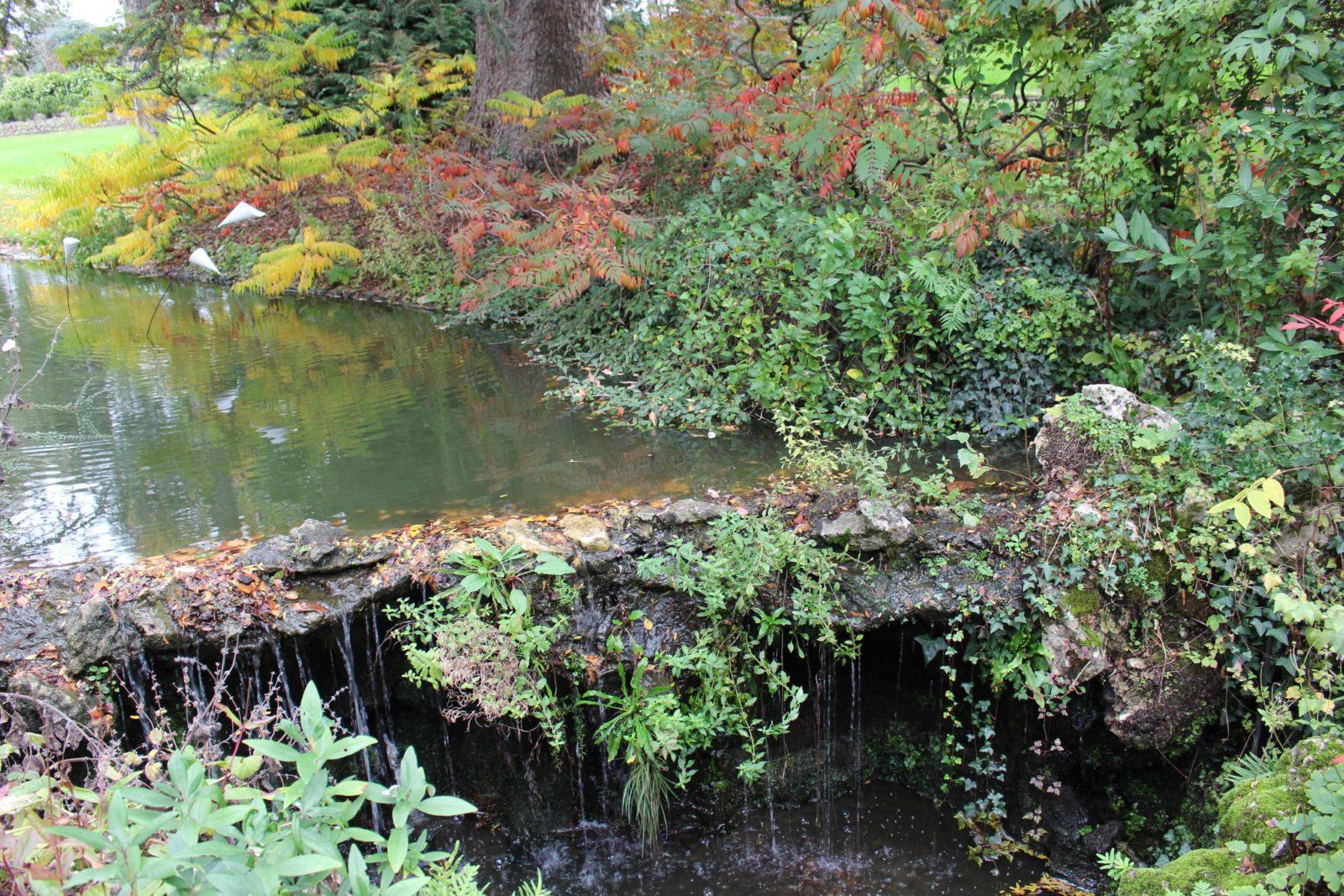 Nantes cours d'eau Jardin des plantes