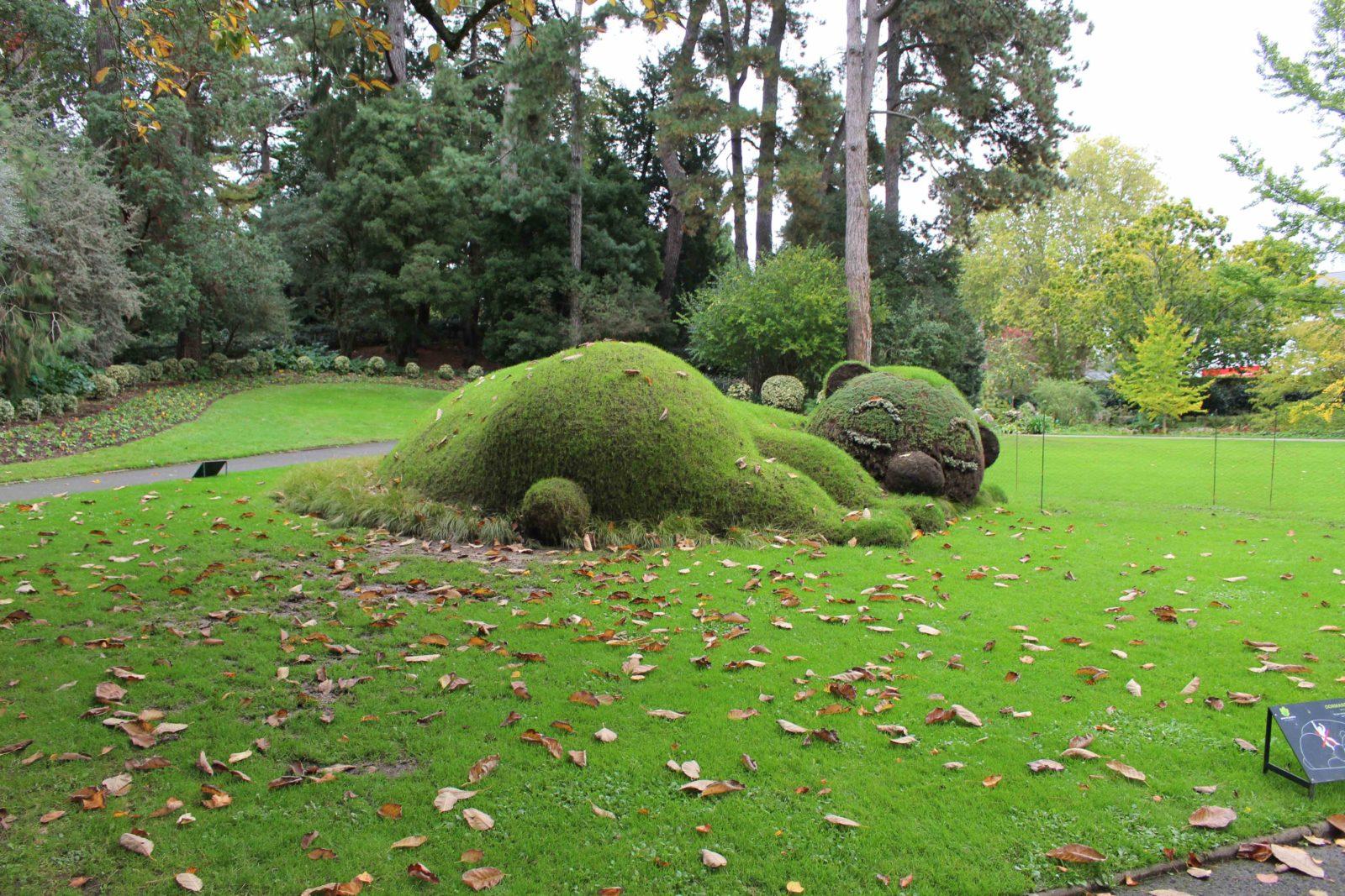 Nantes ours géant Jardin des plantes