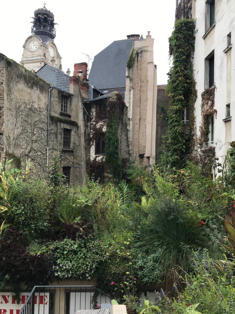 Nantes Jungle intérieure