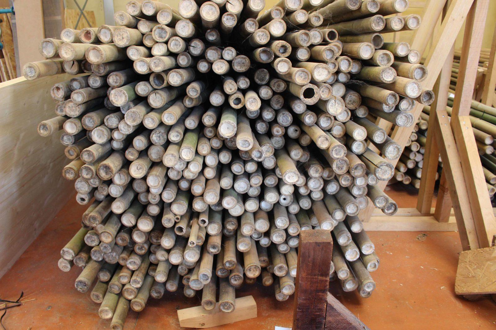Déambulons cannes bambou
