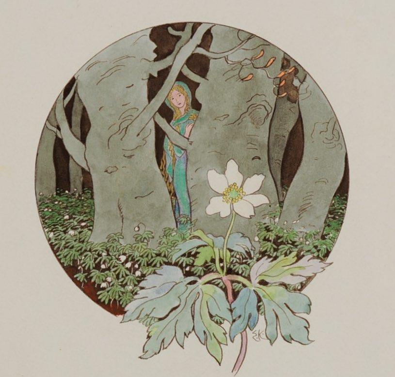 Blumen. Ritornelle: Anemone - Ernst Kreidolf