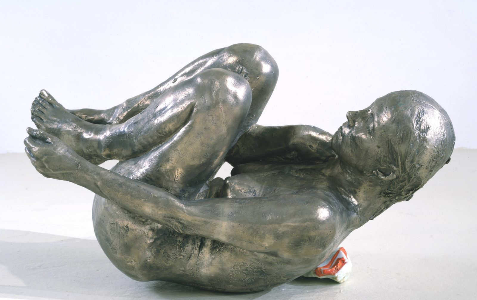 Kiki Smith Curled up Body 1995
