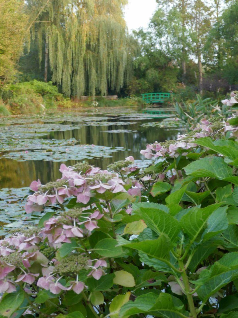 étang et nénuphars jardin  de Claude Monet à Giverny