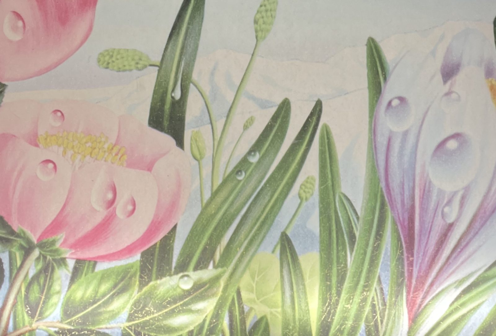 Alain Le Foll Détail de l'affiche pour l'Eau d'Evian, 1964