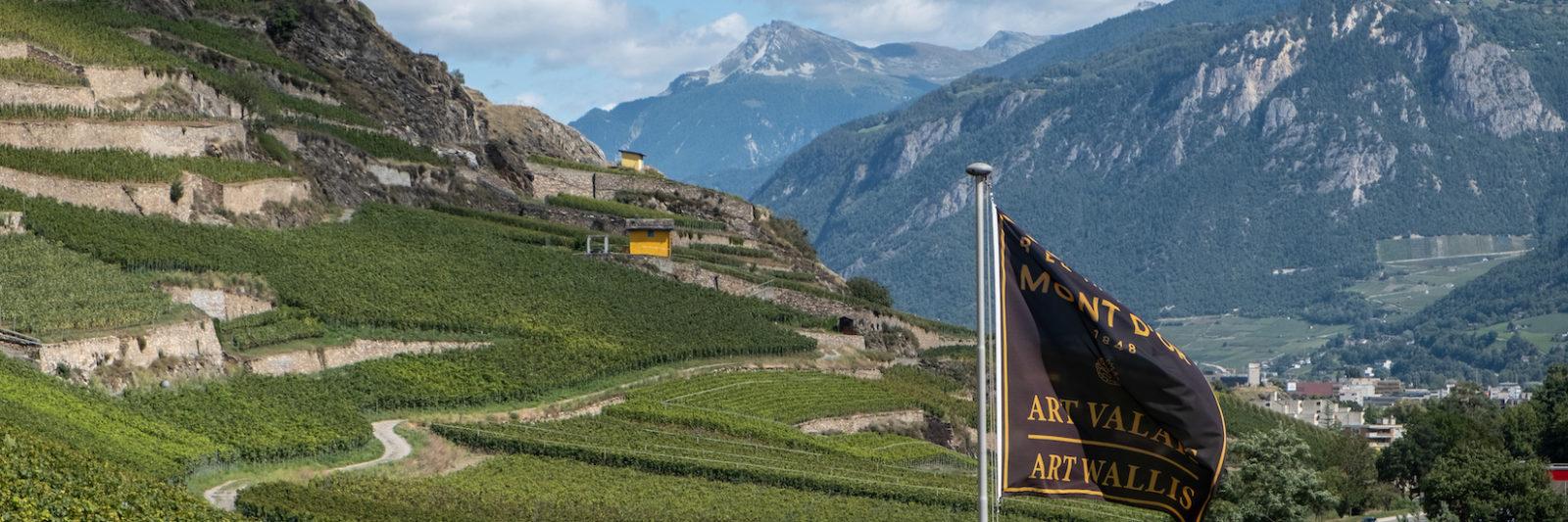 Art Valais Wallis -Domaine du Mont d'Or à Sion