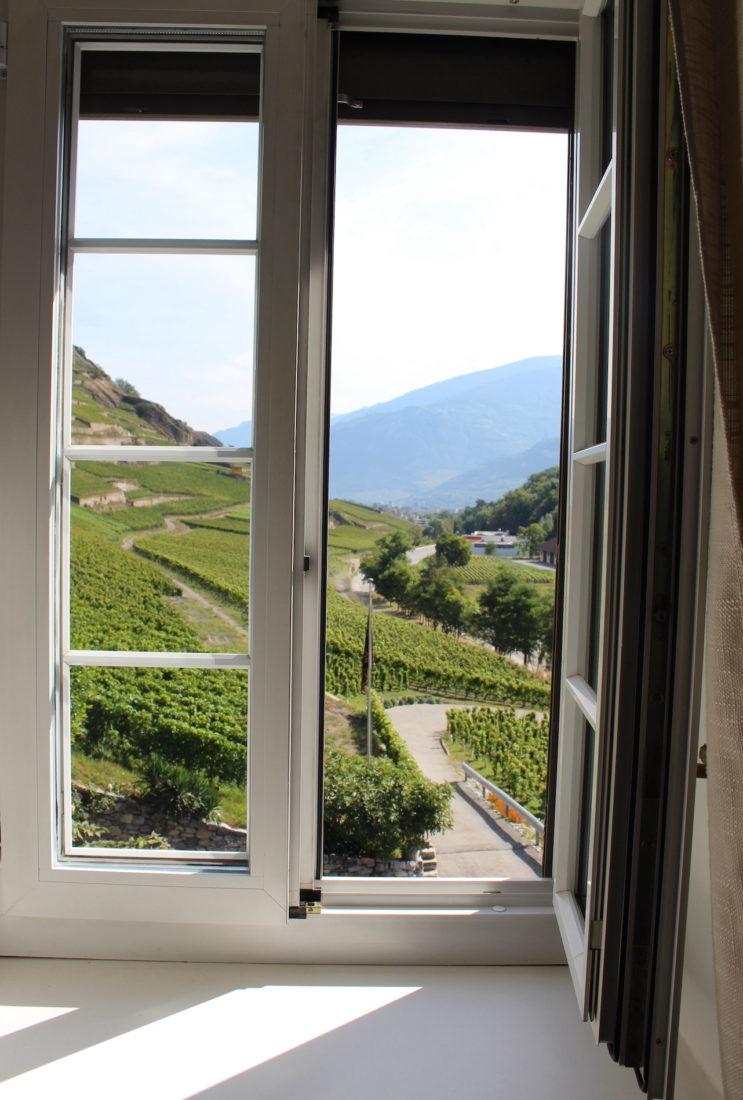 Vue de la fenêtre de Résidence du Mont d'Or