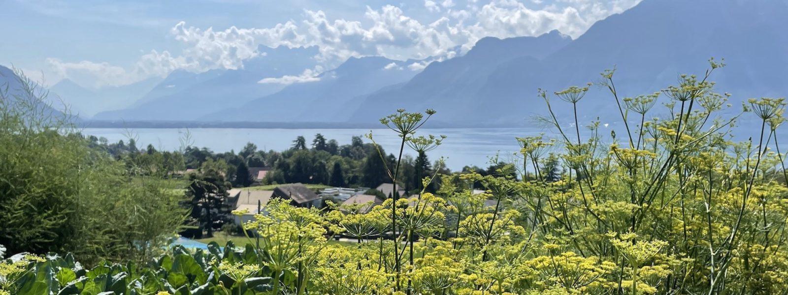Domaine de La Doges vue sur le lac et montagnes