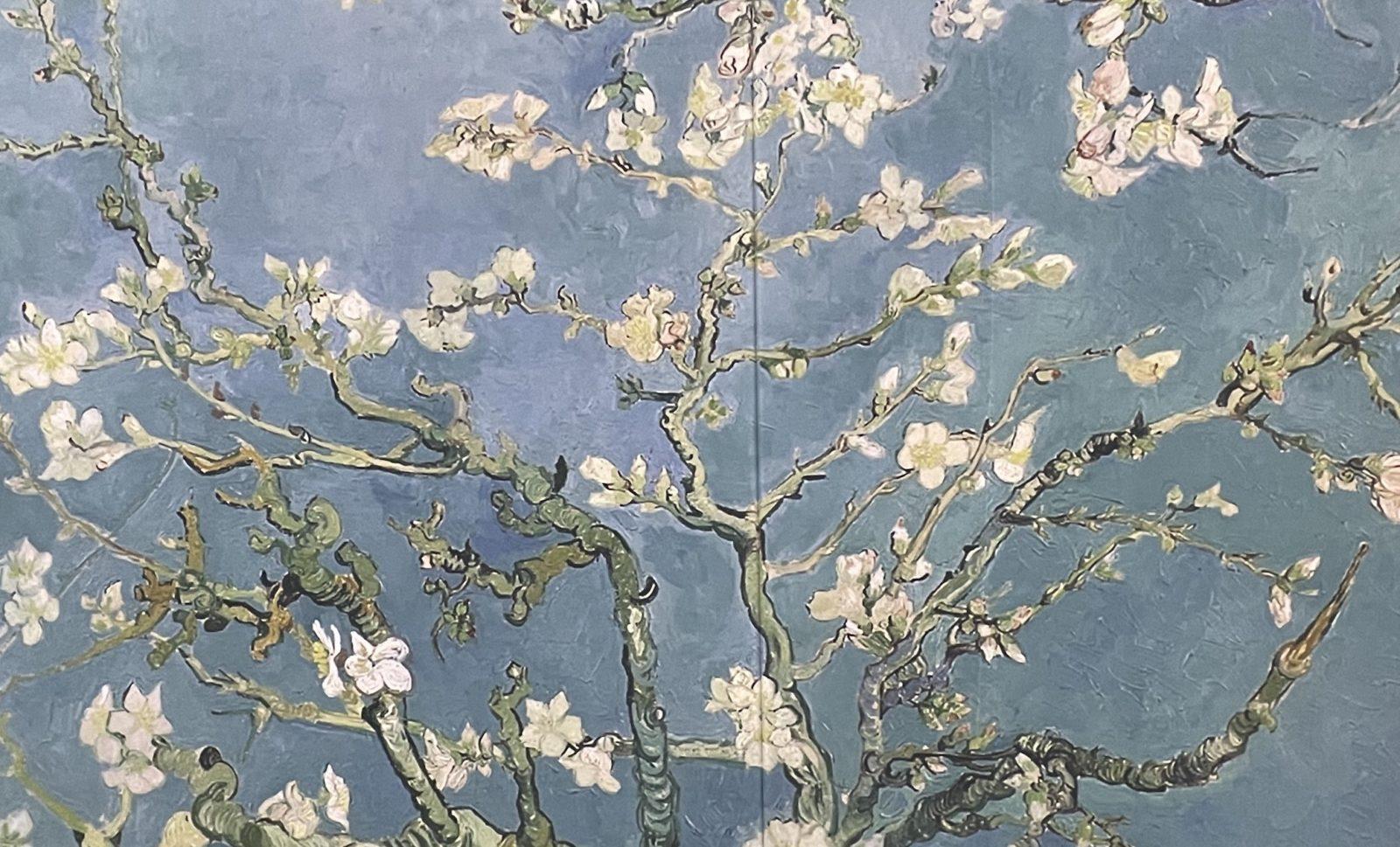 Van Gogh Alive amandier en fleurs