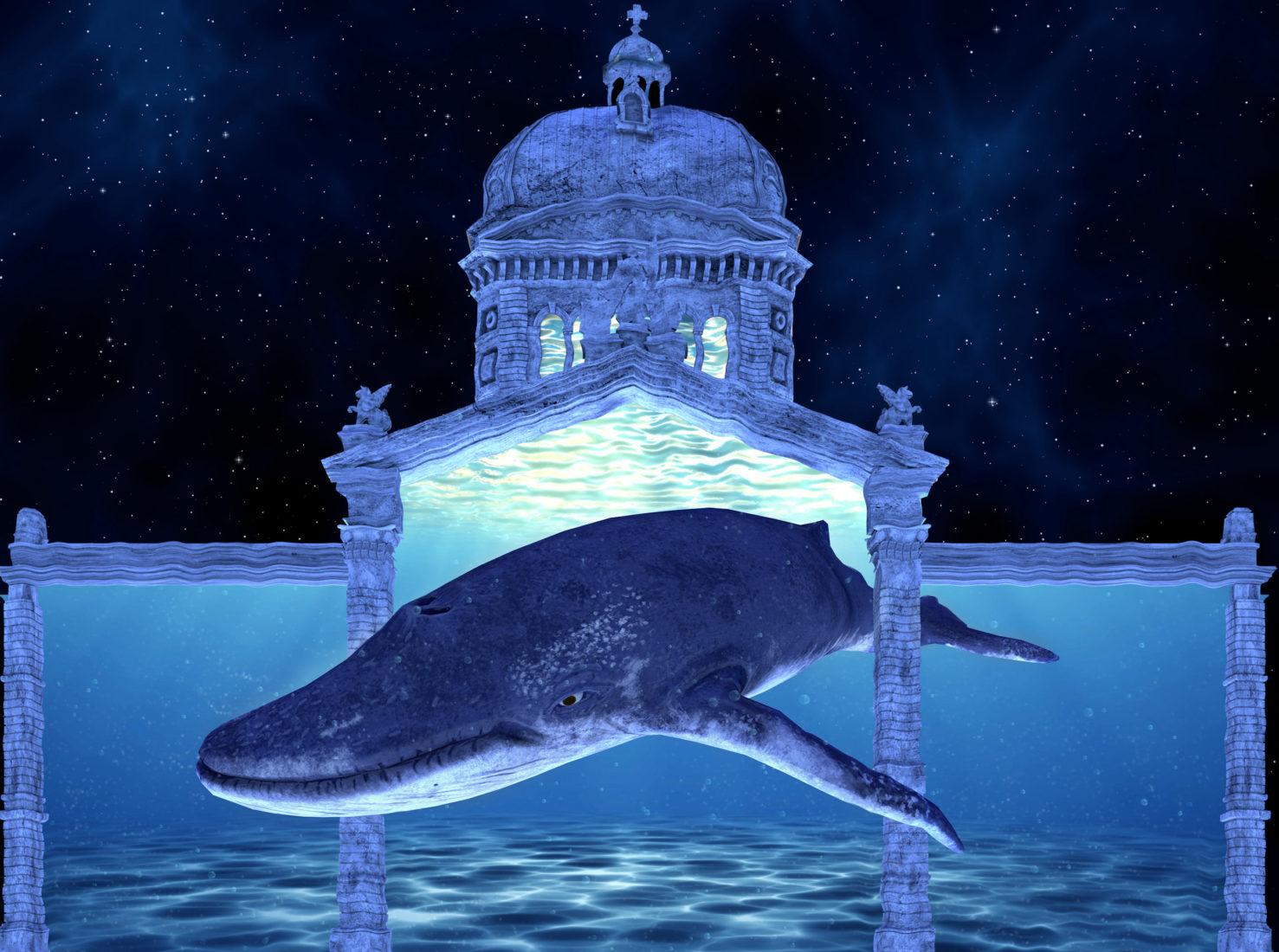 Bundesplatz «Planet Hope – Comeback» 2021 Une baleine
